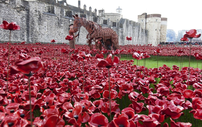 """War Horse Joey """"Blood swept lands and seas of red"""" Tower of London and writer Michael Morpurgo"""