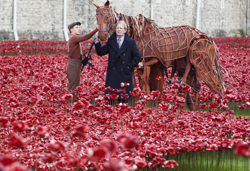 """War Horse Joey visits """"Blood swept lands and seas of red"""" at the Tower of London with writer Michael Morpurgo"""