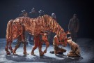 2. James Backway (Albert Narracott) and the cast of War Horse at the New London Theatre, photo by Brinkhoff Mögenburg