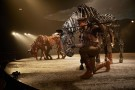5. The cast of War Horse at the New London Theatre, photo by Brinkhoff Mögenburg
