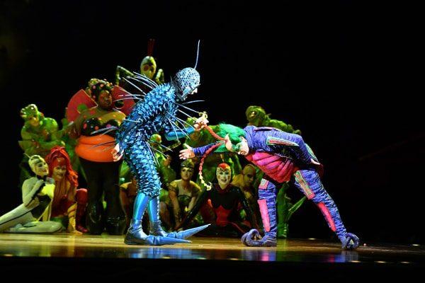 OVO – Cirque du Solei